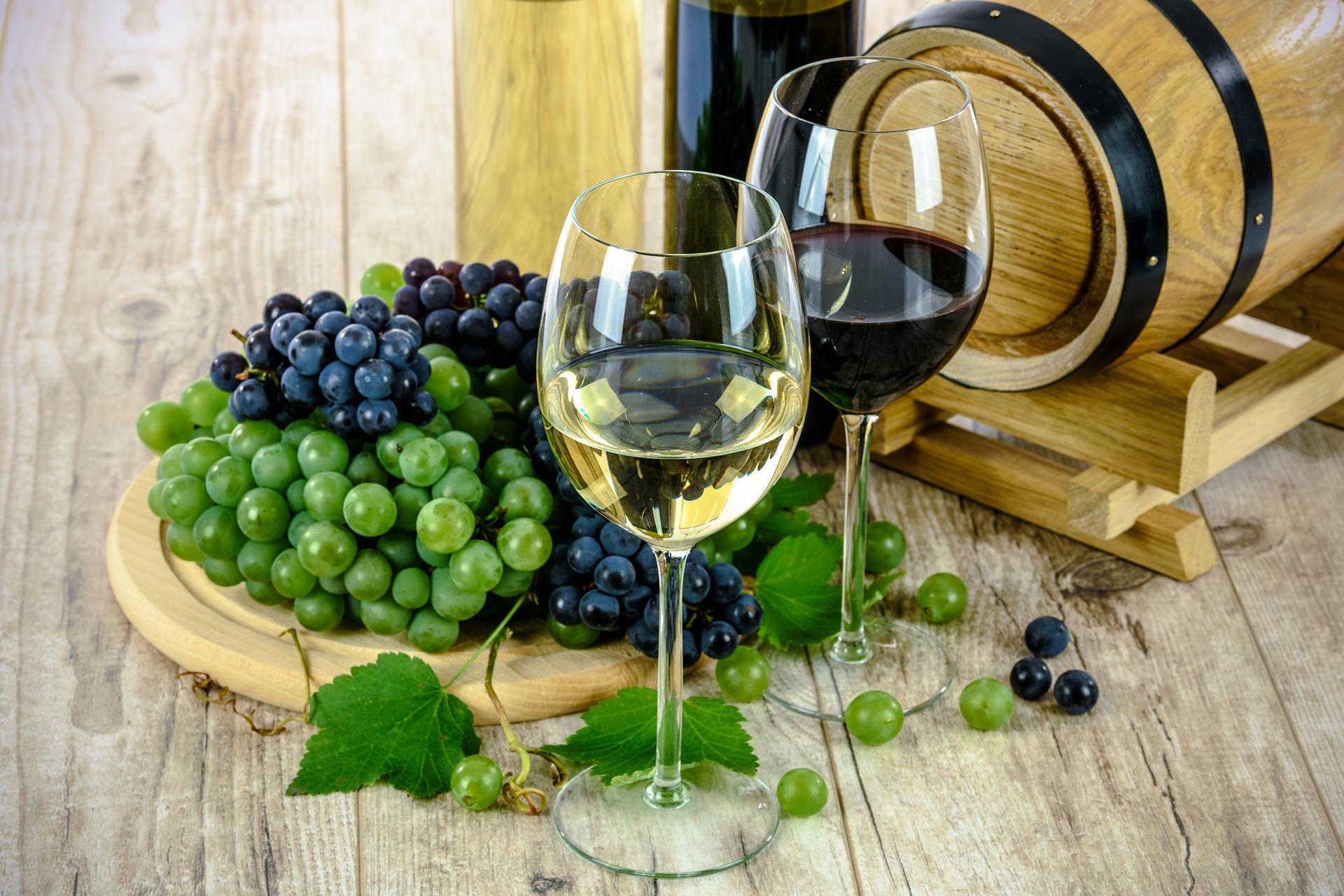 Wineyou