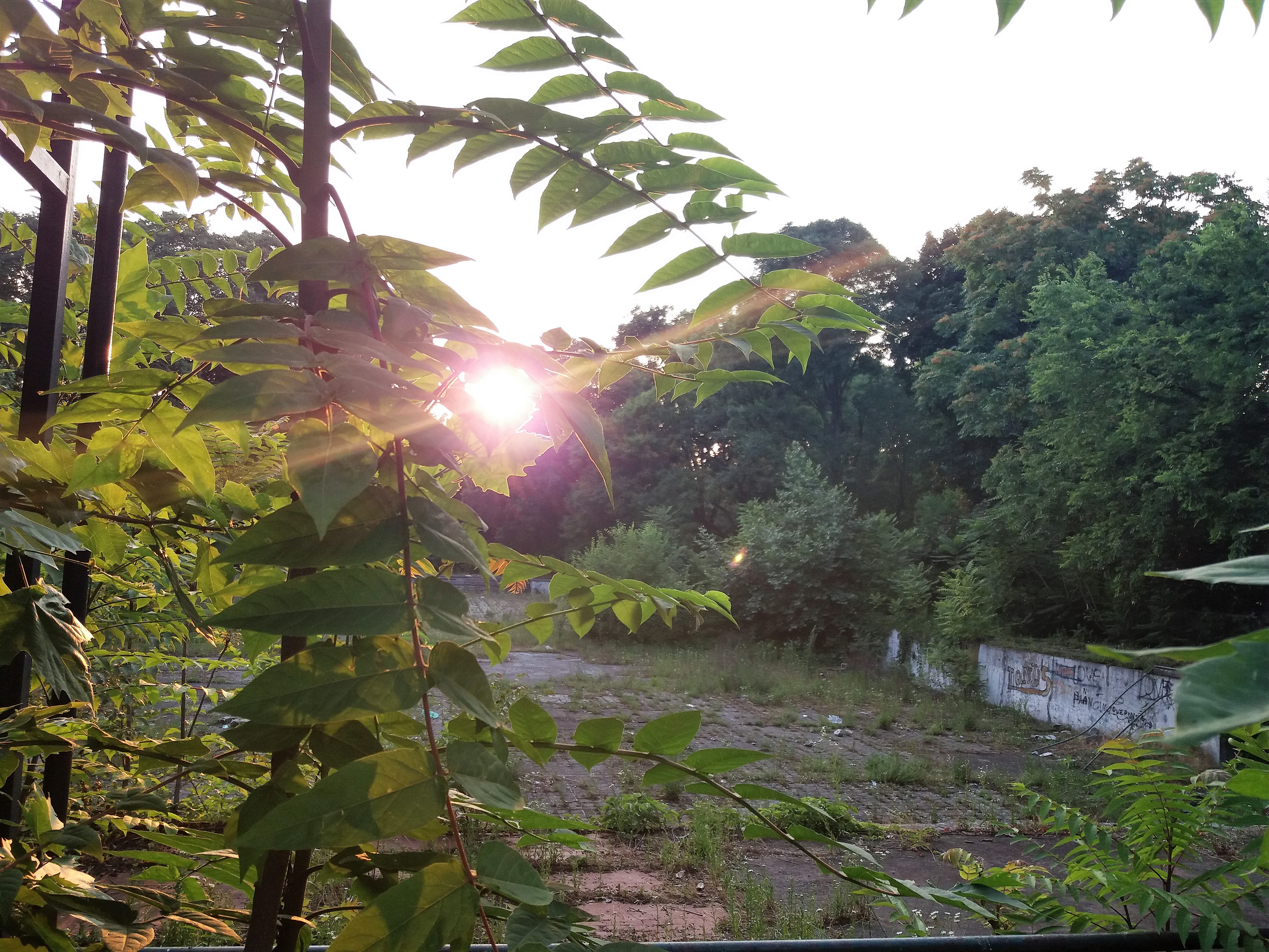 Piscina al Parco Trotter