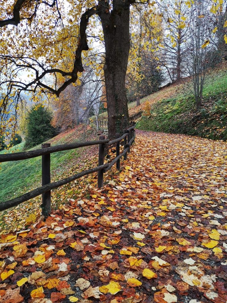 Trekking parco burcina